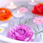 アロエパウダーの入浴効果で美と健康を手に入れよう!