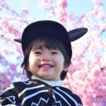 お花見 子連れ時の便利な持ち物リスト総集編!子供が楽しめるおもちゃも!